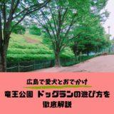 【竜王公園ドッグラン】広島市西区ドッグランの魅力と遊び方