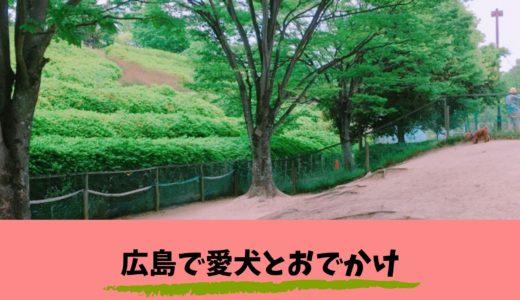 【広島で愛犬とお出かけ】竜王公園ドッグランの遊び方を詳しくご紹介