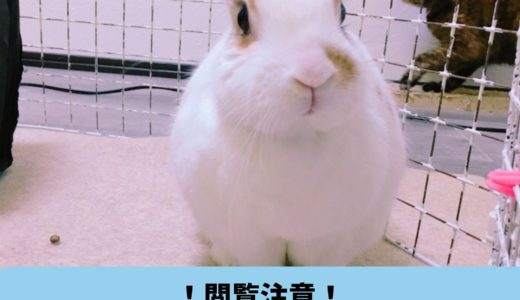 【閲覧注意】富士通ゼネラル脱臭機PLAZION(プラズィオン)のお手入れ方法
