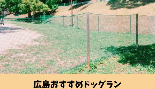 広島おすすめドッグラン|たくさんの犬と交流できる【花みどり公園】の魅力と遊び方