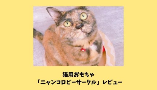 レビュー【ミュー(mju:)猫用おもちゃニャンコロビーサークル】猫が喜ぶ爪とぎ付きおもちゃの特徴・口コミ・使用感