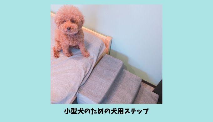 小型犬のための犬用ステップ