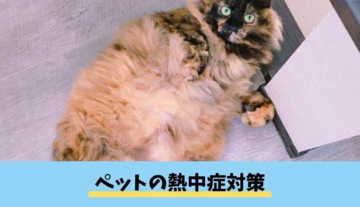 【ペットの熱中症対策】愛犬・愛猫・愛兎のための夏場のエアコン(冷房)の正しい使い方・注意点