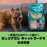 【愛猫のためのフード選び】ピュリナワンキャットフードの特徴・種類・口コミを徹底調査