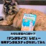【ピュリナワンデンタライフレビュー】愛猫の口腔ケアにおすすめの歯磨きスナック
