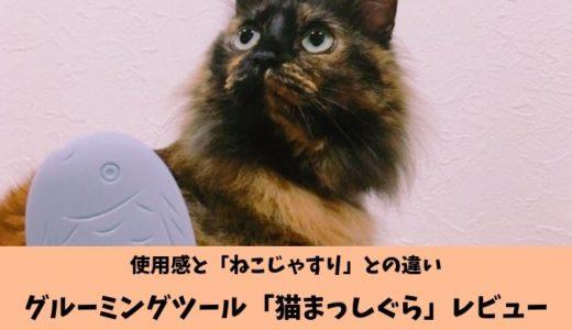 レビュー「猫まっしぐら」グルーミングツールスティックの使用感とねこじゃすりとの違い