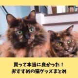 【2020年版】猫へのプレゼントや猫好き飼い主におすすめのグッズ9選