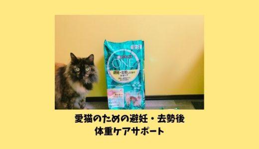 ピュリナワンキャットフード「避妊・去勢した猫の体重ケア」レビュー
