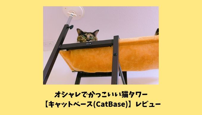 オシャレでかっこいい猫タワー【キャットベース】レビュー