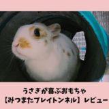レビュー「うさぎが喜ぶおもちゃトンネル」