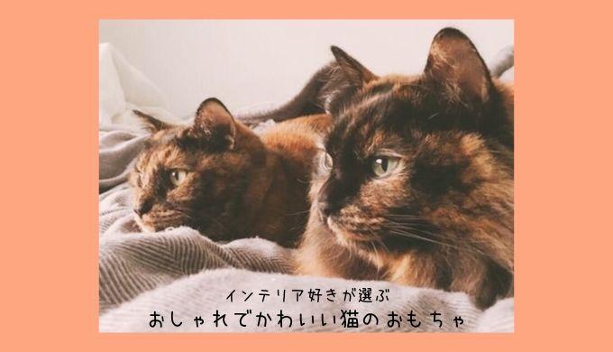 インテリア好きが選ぶ!おしゃれでかわいい猫用おもちゃ