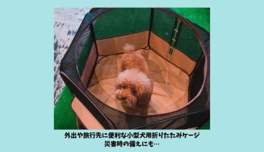 【リッチェルたためるペットサークルレビュー】旅行や災害時におすすめ小型犬用の折りたたみケージ