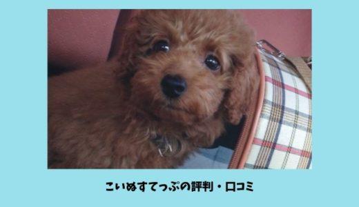 こいぬすてっぷの評判・口コミはどうなの?子犬の飼い主初心者をサポートしてくれる情報満載の通信教育サービス