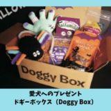 ドギーボックス(DoggyBox)の評判は?送料はかかる?注文・解約方法など徹底解説!