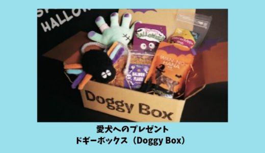 ドギーボックス(DoggyBox)