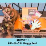 ドギーボックス 猫