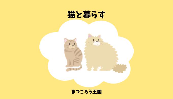 猫との暮らしに役立つ豆知識