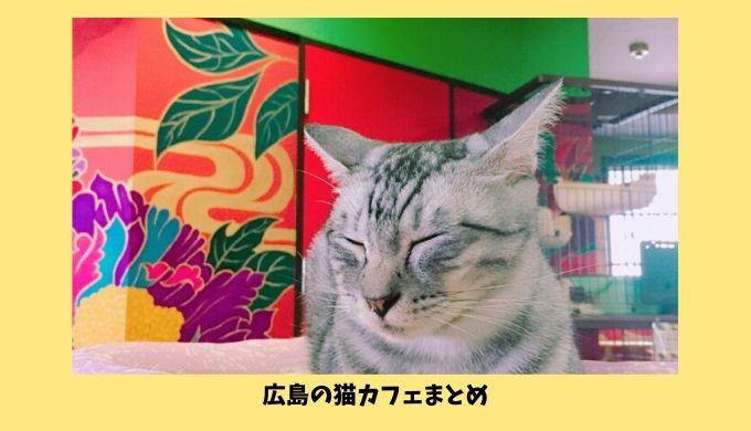 広島の猫カフェ