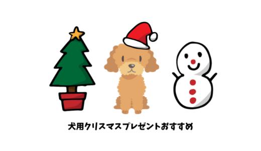 【犬用のクリスマスプレゼント】愛犬家も納得のおすすめ15選