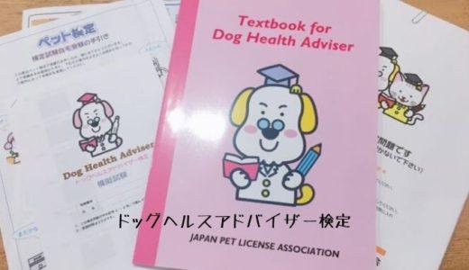 ドッグヘルスアドバイザー検定合格!申し込みから受験・合格までを詳しく解説します