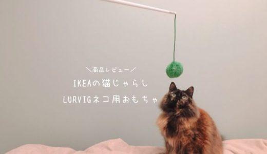 IKEAの猫じゃらし【LURVIGネコ用おもちゃ】レビュー