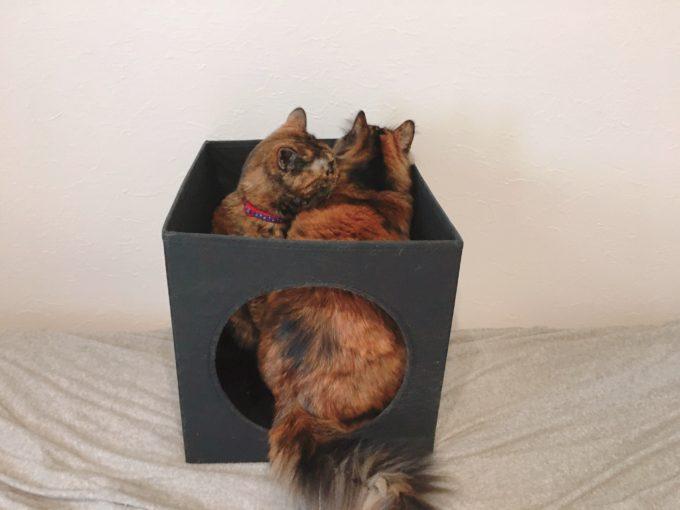 IKEA猫ハウス【LURVIGキャットハウス】